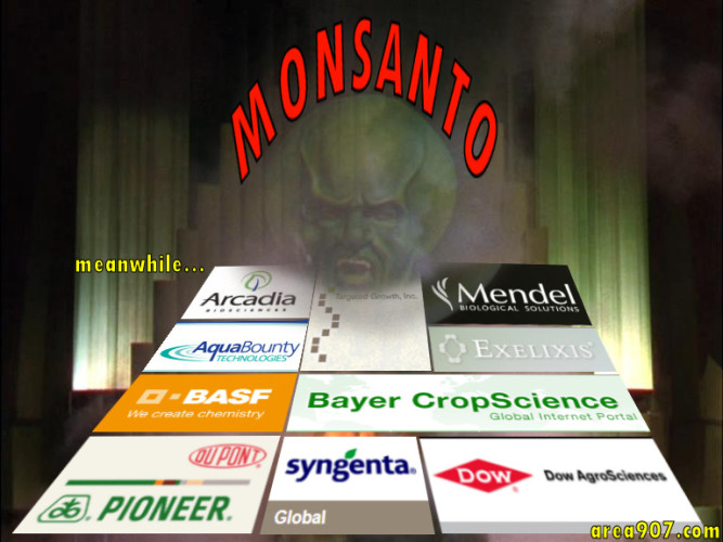 While the World tosses stones at Monsanto...